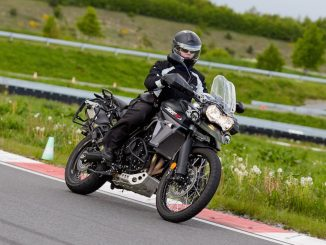 She is a rider-Julia-Triumph-Tiger
