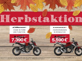 Honda-Naked Bike-CB650F-CB500F-Motorrad