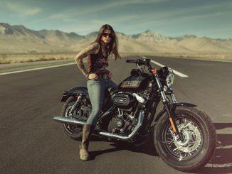 Forty Eight von Harley Davidson Modelljahr 2013